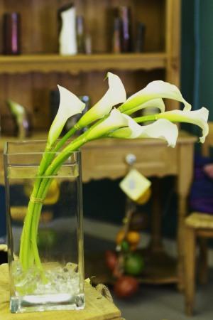 White calla lilies Arc of White