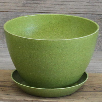 Ecoforms bowl avacado