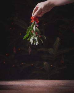 Mistletoe Christmas plant.