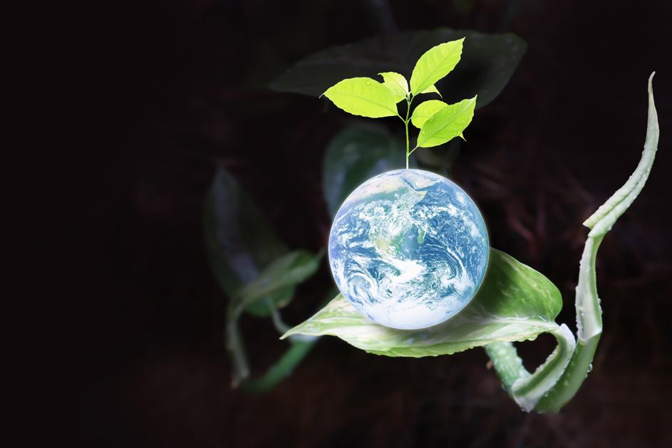 Gaia, mother earth, sitting on a plant leaf.
