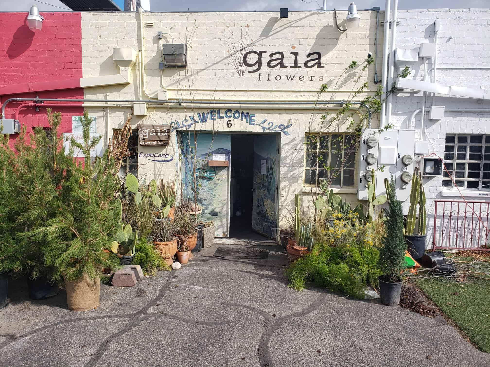 Florist storefront surrounded by plants in Las Vegas Arts District